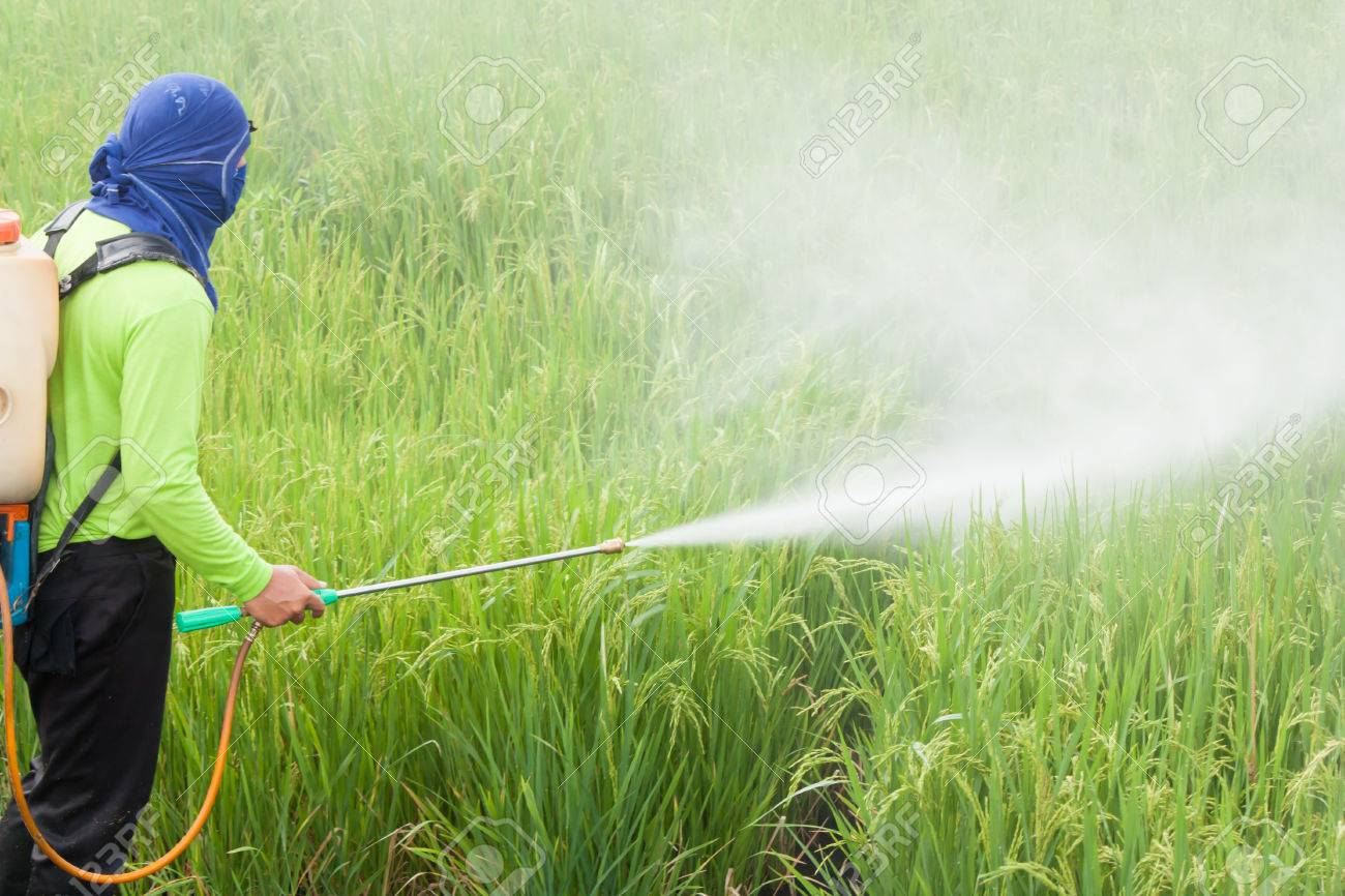 pesticide in ile ilgili görsel sonucu