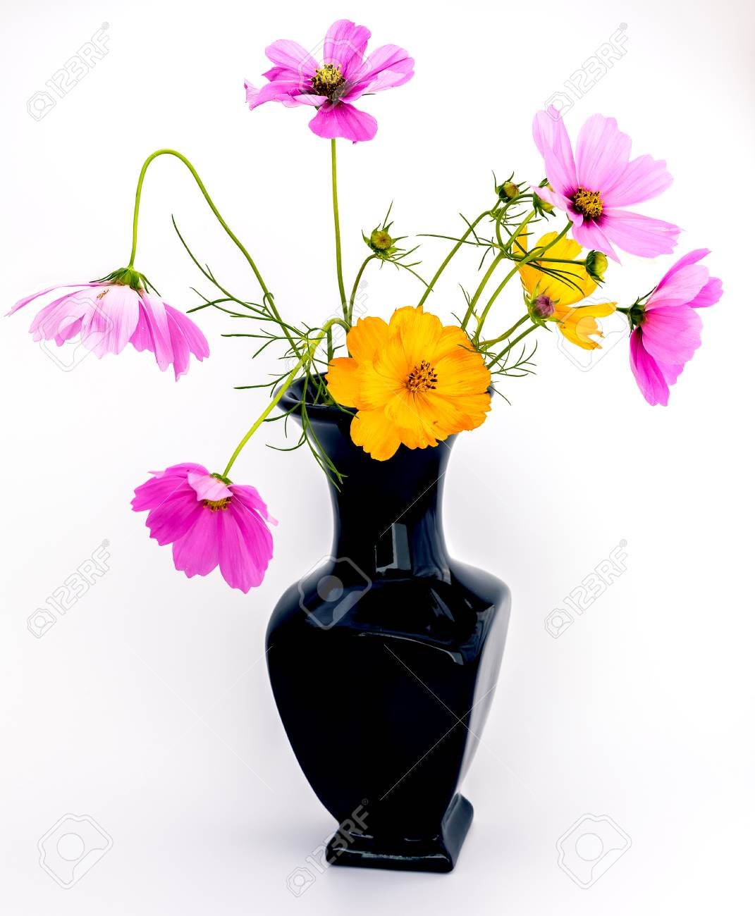 Black vase with a bouquet of purple and orange wild flowers isolated black vase with a bouquet of purple and orange wild flowers isolated on a white background mightylinksfo Image collections