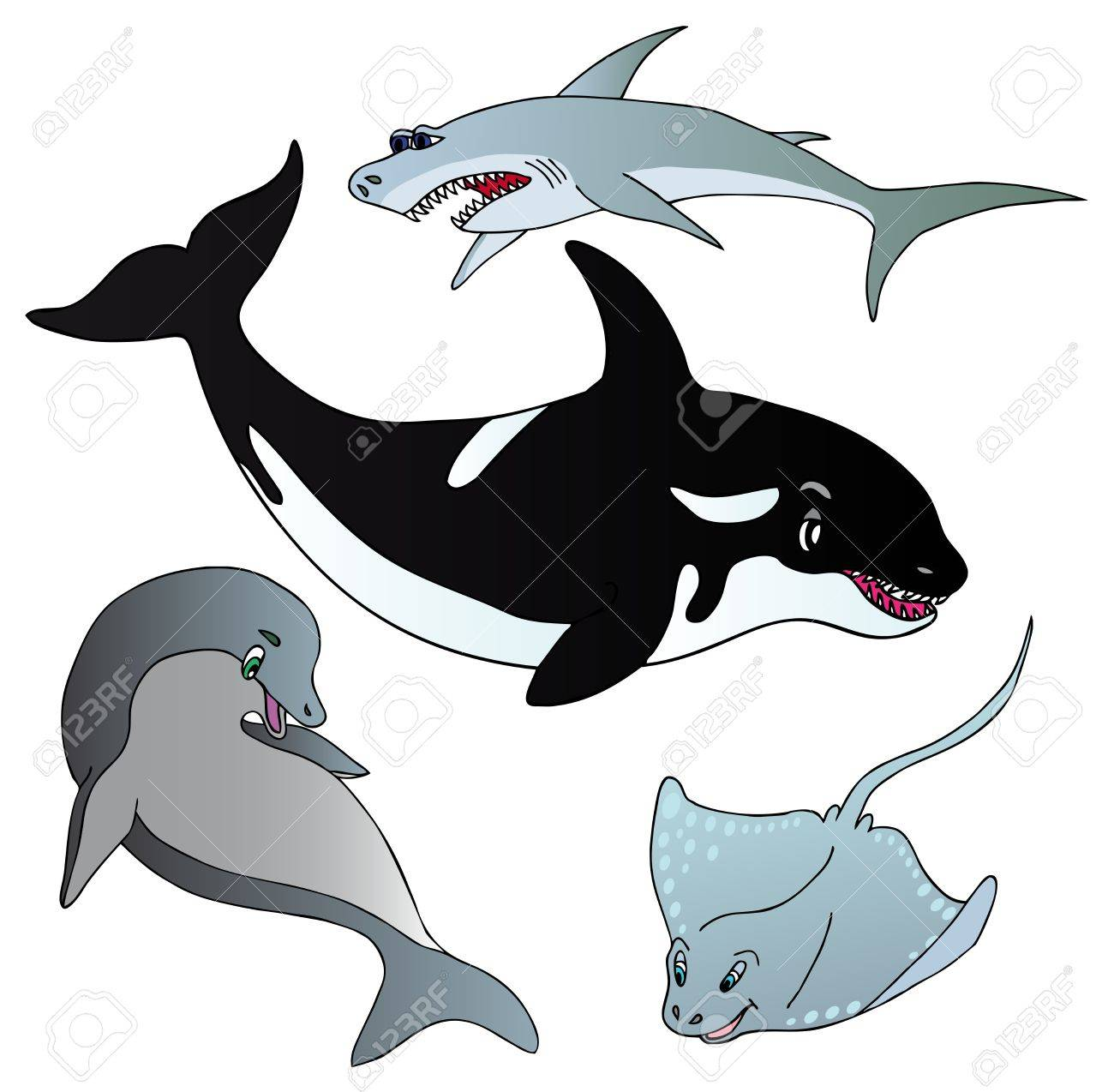 Various marine fishes collection - vector illustration Stock Vector - 16235445