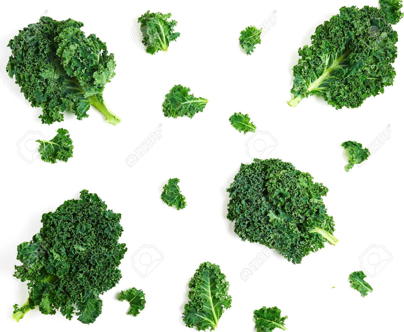 Creative layout made of kale. - 129843118