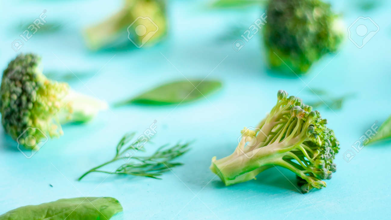 pattern of broccoli, spinach, fennel, vegetarian, healthy eating concept - 151798454