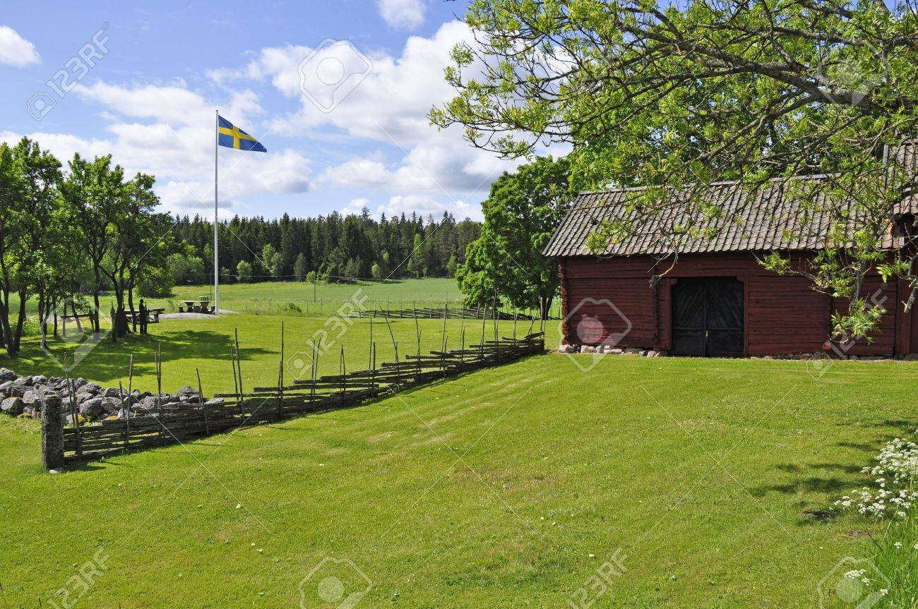 Landscape in sweden in a Midsummer day. Stock Photo - 5165292