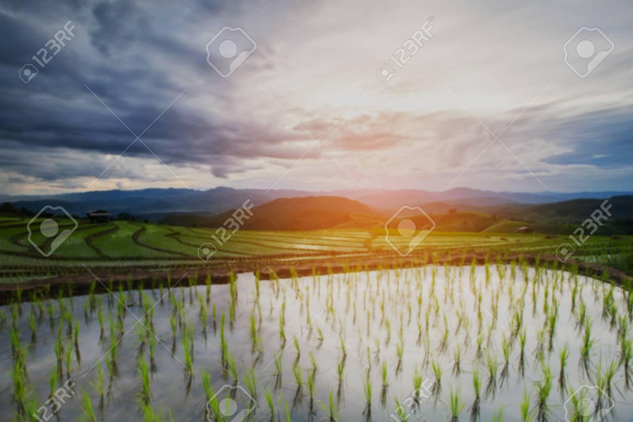 Borroneada Nube De Lluvia En Movimiento Sobre La Agricultura Campos