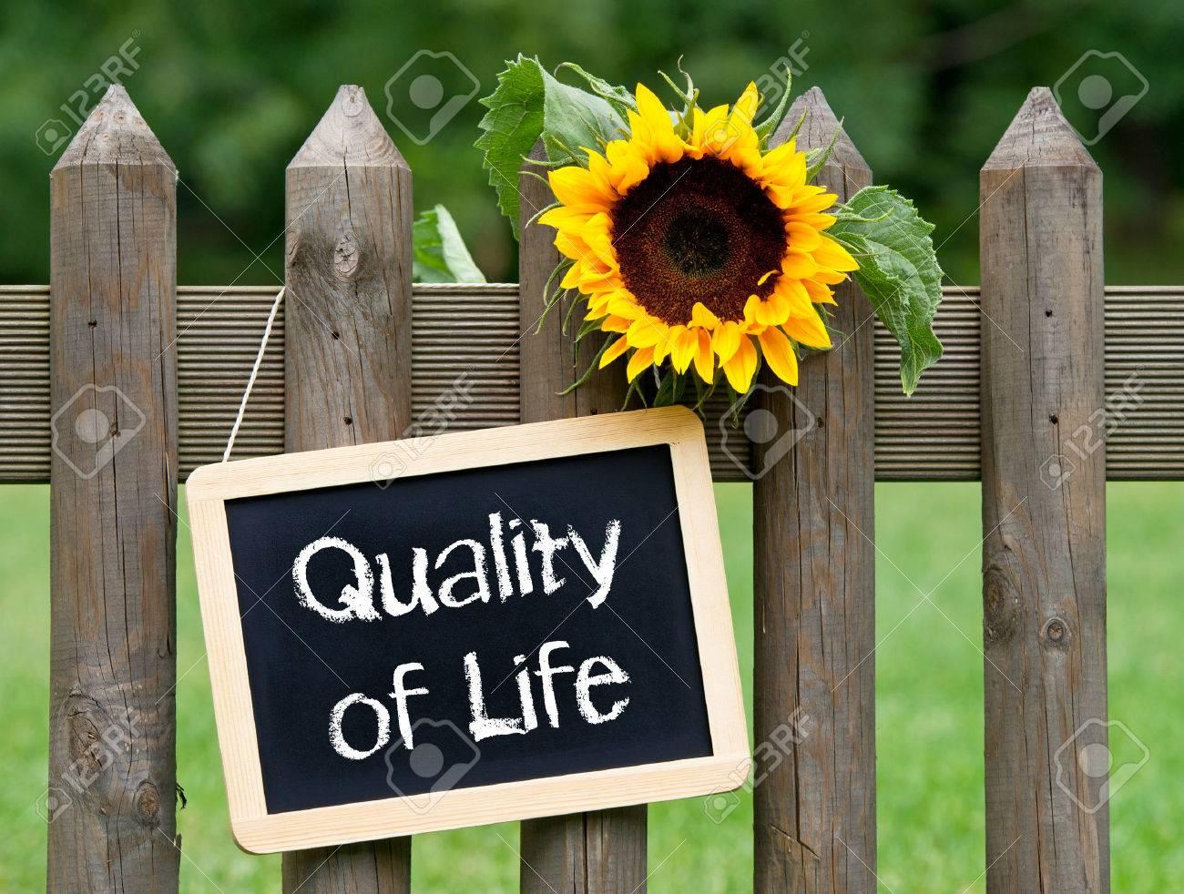 Quality of Life Stock Photo - 45940893