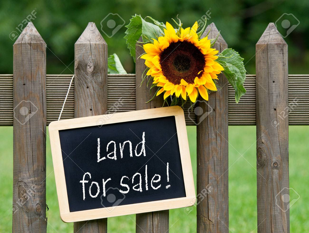 Land for sale - 48518352