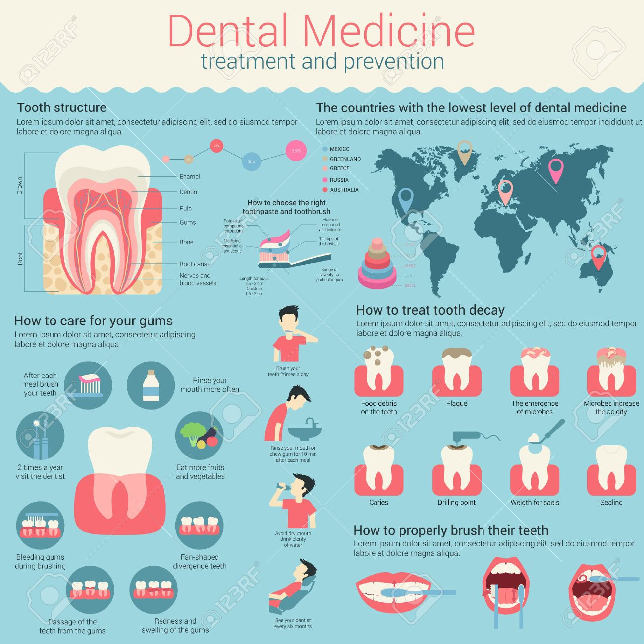 Dental medicine infographic or infochart layout with line and circle charts or diagrams and world map. Template with tooth structure and ways to treat teeth decay, how to care gums and how to choose toothpaste and toothbrush Archivio Fotografico - 60018899