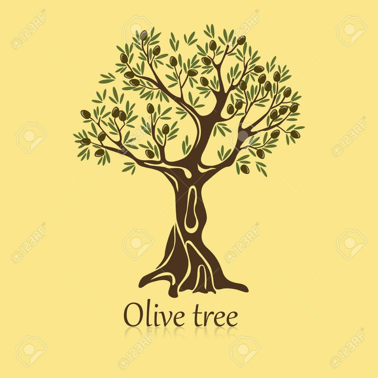 Olivier Avec Des Baies Sur Les Branches. Bannière De La Plante De ...