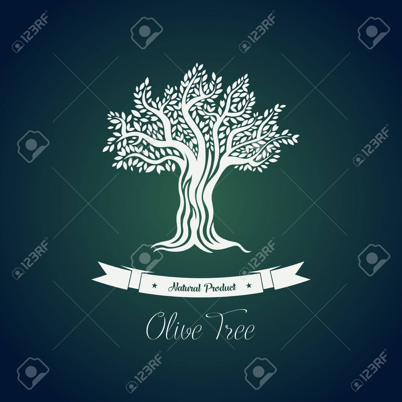 Olive Tree Vector Stock Photos. Royalty Free Olive Tree Vector Images