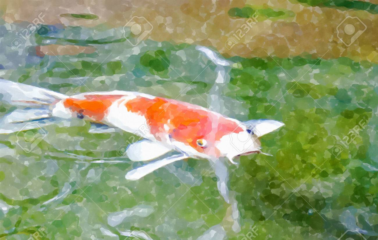 Fancy Carp Fish Swim In The Water,water Color Effect Design For ...
