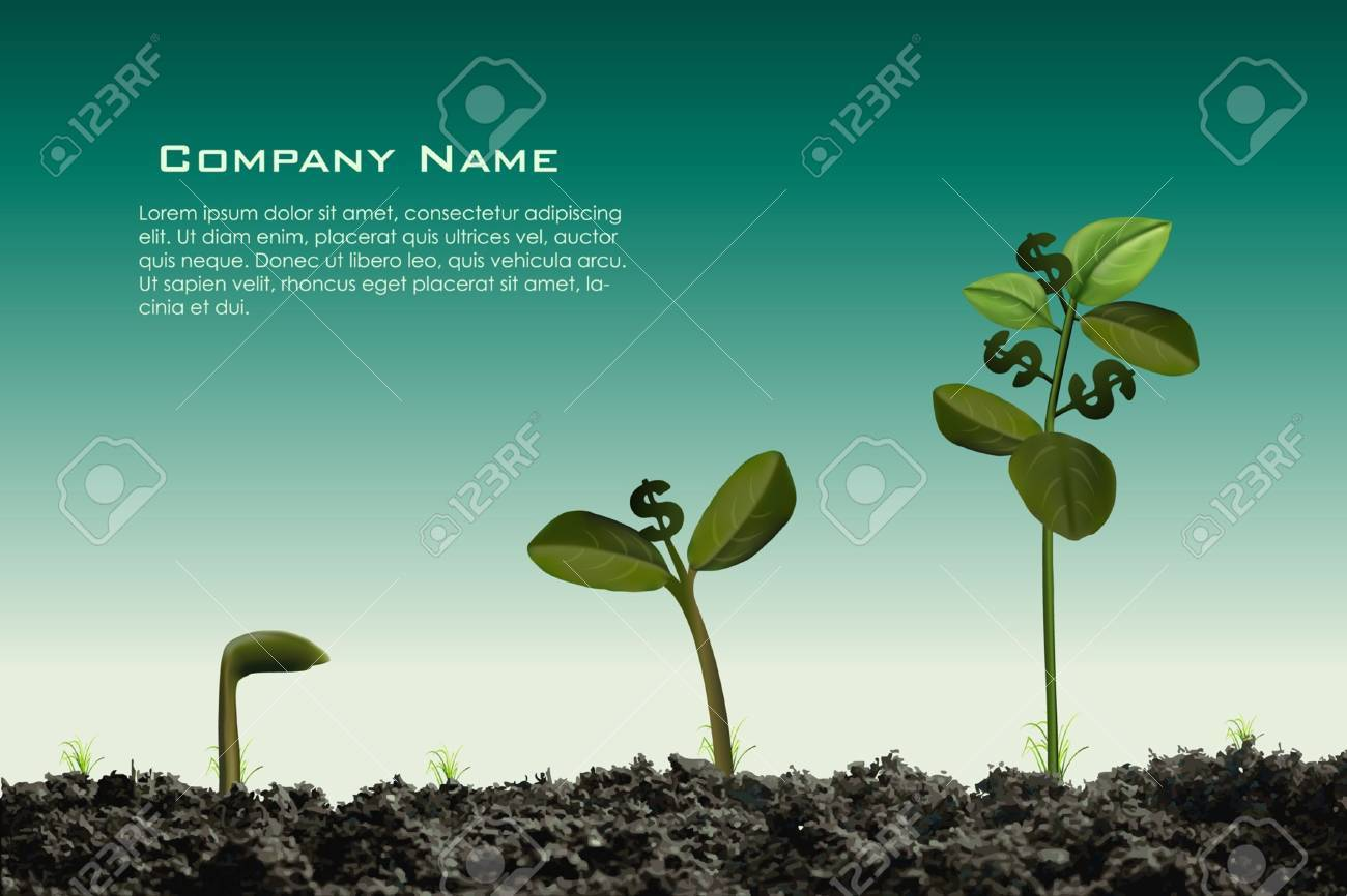 beautiful money plant grows with dollar symbol as a fruit Stock Vector - 13385938