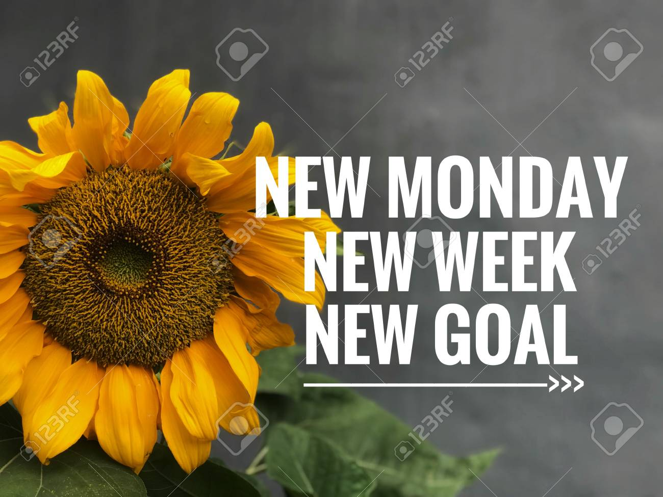Motivational and inspirational quotes - New Monday, new week,..