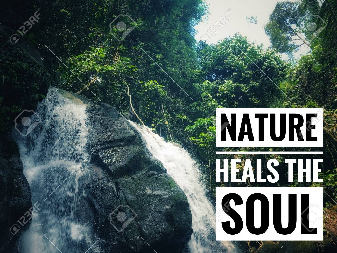 motivational and inspirational quote nature heals the soul