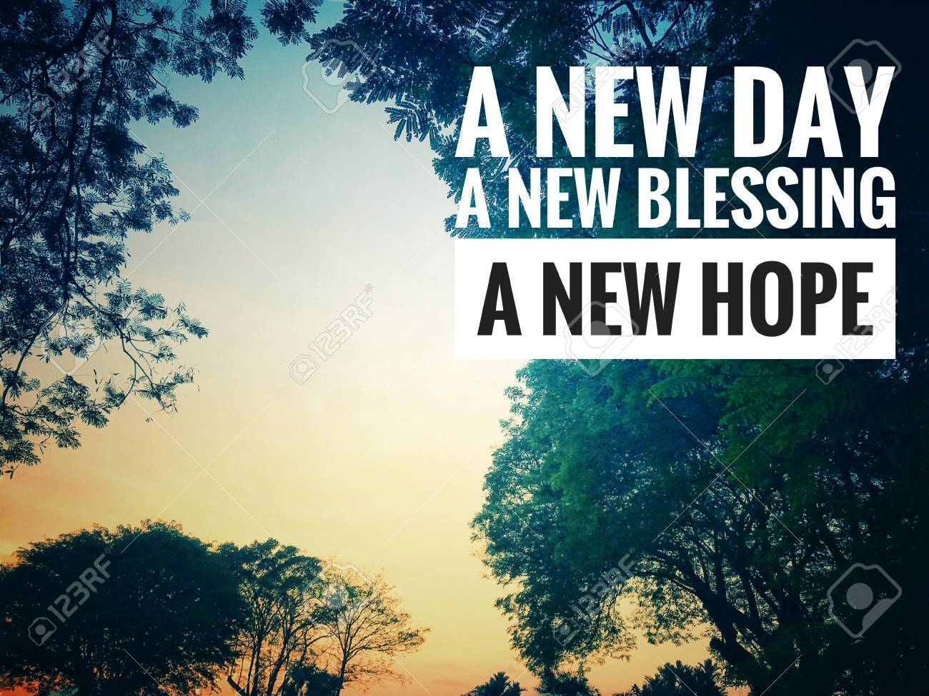 Motivational And Inspirational Quote A New Day A New Blessing