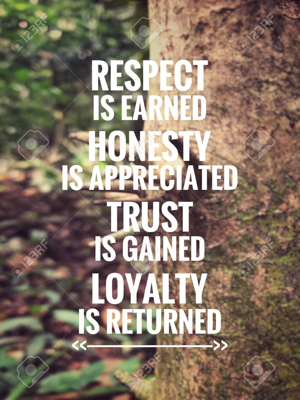 Motivational And Inspirational Quote Respect Is Earned Honesty Stock Photo Picture And Royalty Free Image Image 105385997