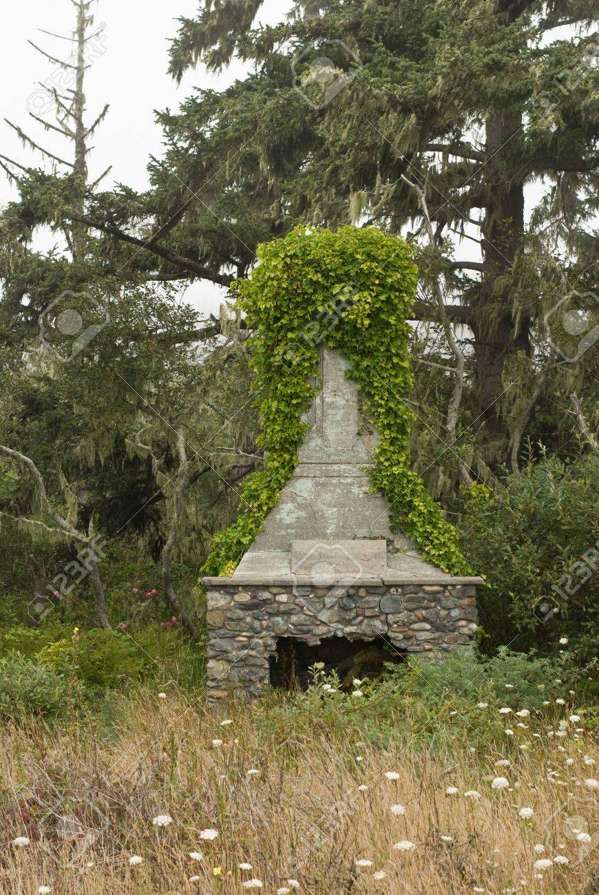ivy billows from the concrete smokestack of an old stone fireplace