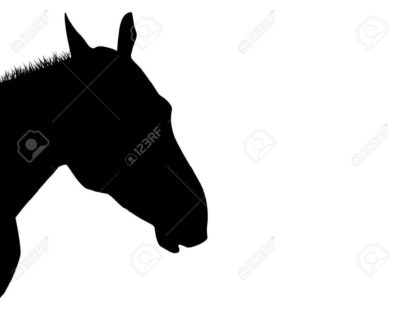 A silhouette of a horse head isolated on white Stock Vector - 13293134