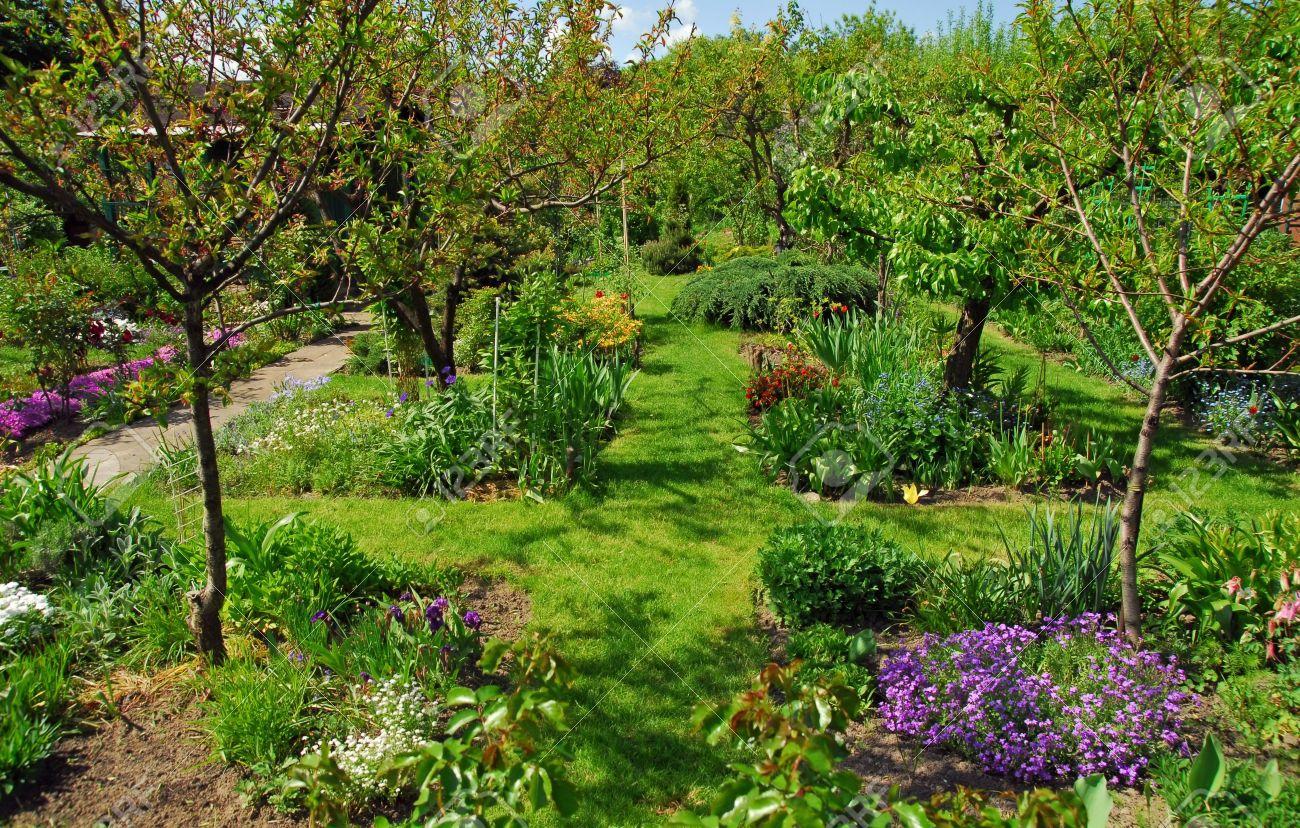 Prezzi Alberi Da Giardino piccolo giardino con un sacco di alberi da frutto, fiori e altre piante.