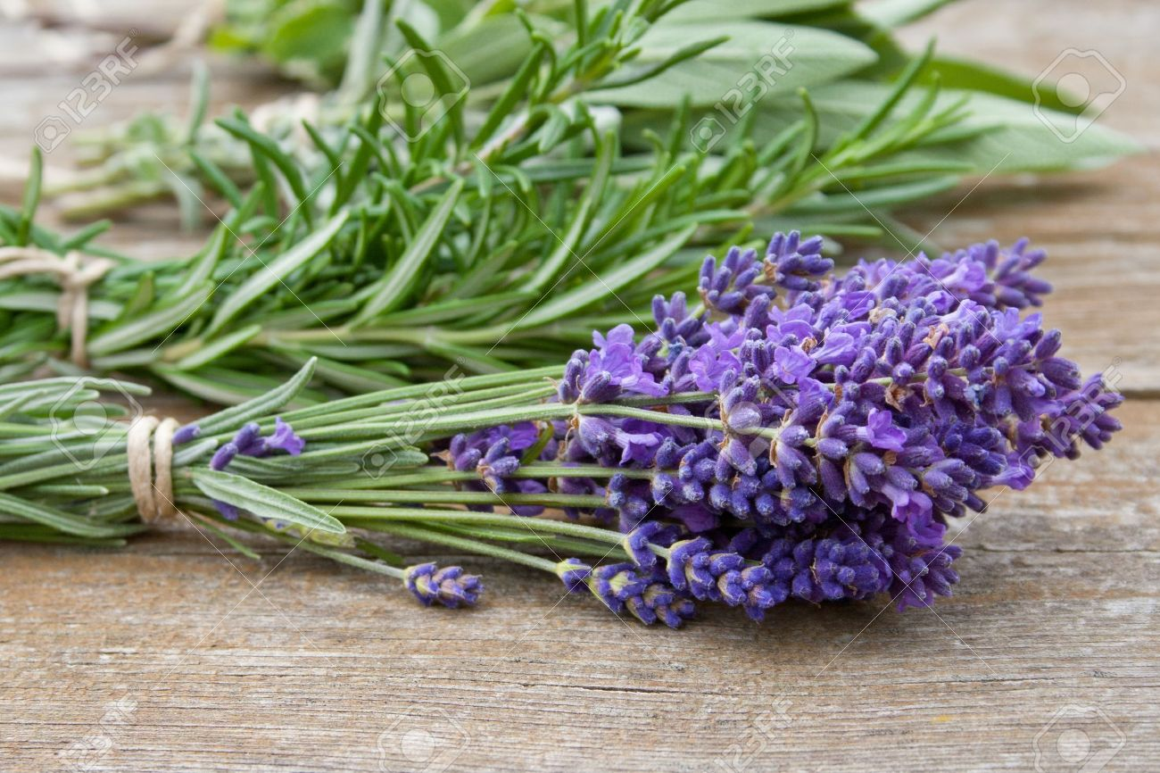 Herb Bouquet With Lavender Rosemary Thyme Sage Stock Photo