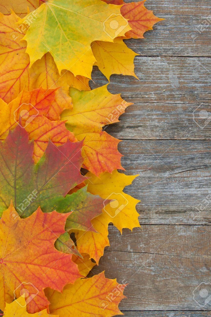 Grenze mit farbigen leafes auf hölzernen Boden Standard-Bild - 16827905