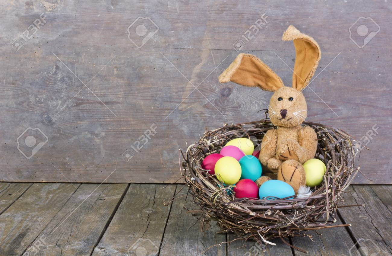 easter bunny in a nest with easter eggs Standard-Bild - 17996272