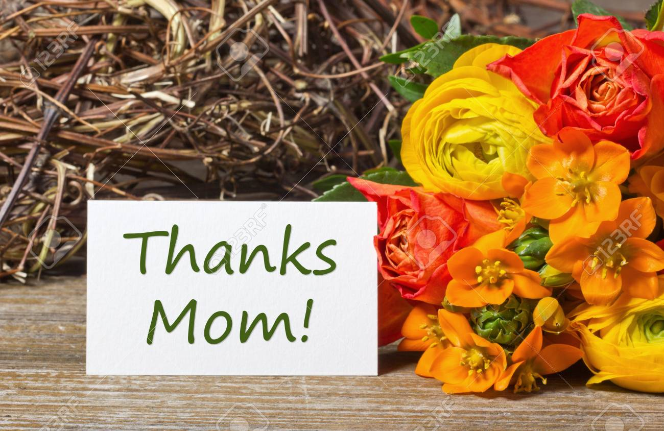 flowers and white card for mothers day Stock Photo - 18304770
