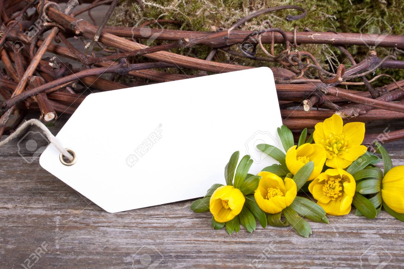 yellow flowers, twigs and white card Stock Photo - 18498073