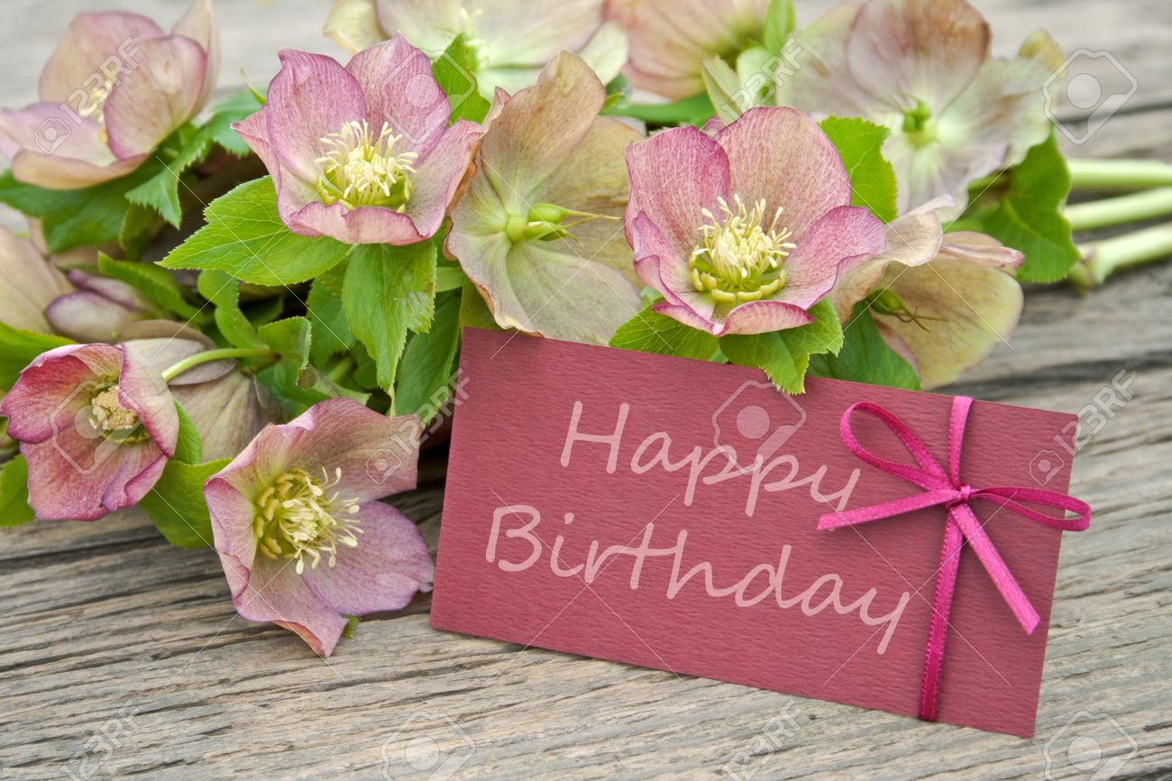 Pink Flowers With Birthday Card Stock Photo