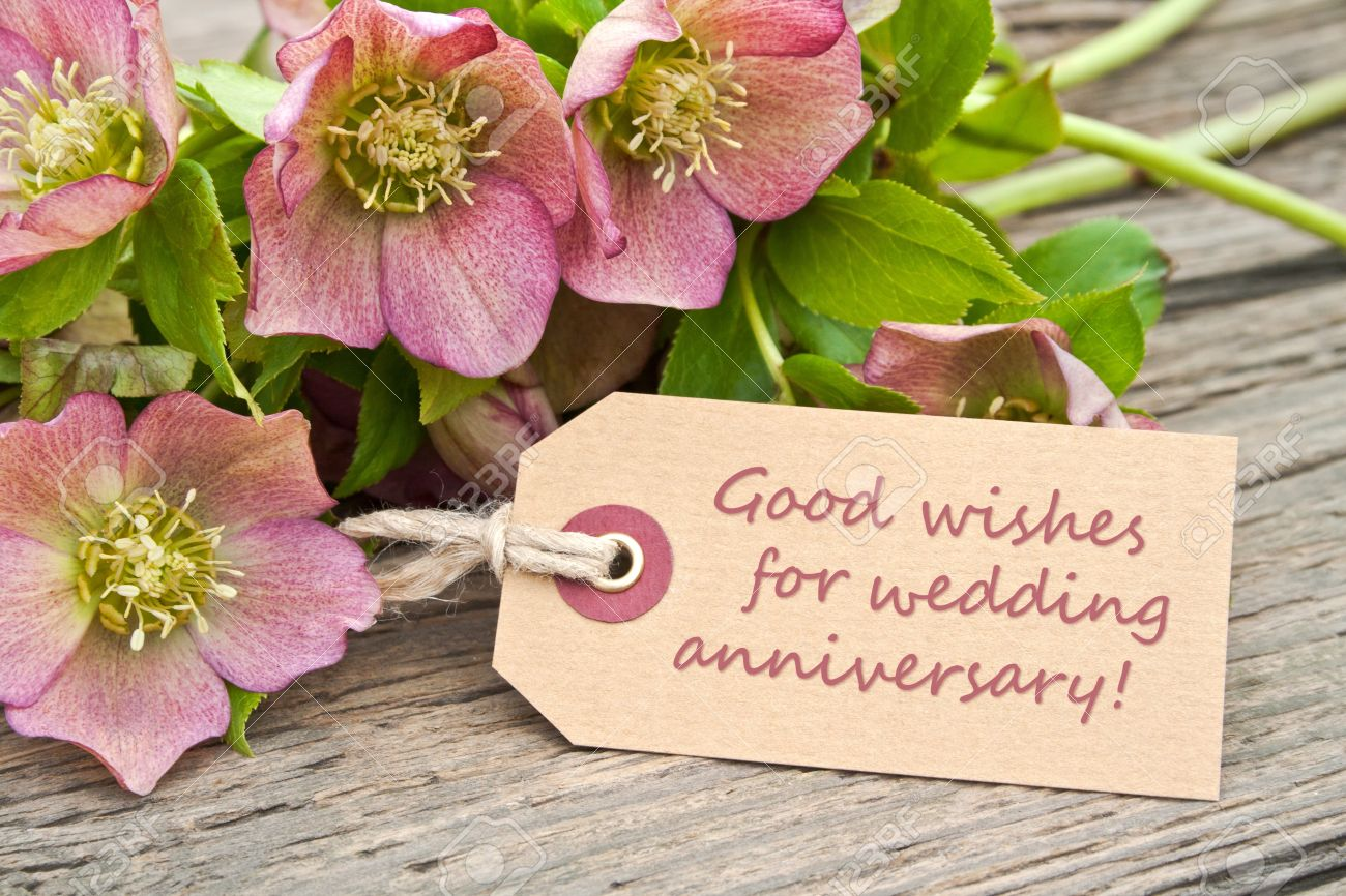 Pink flowers and card to wedding anniversary stock photo picture