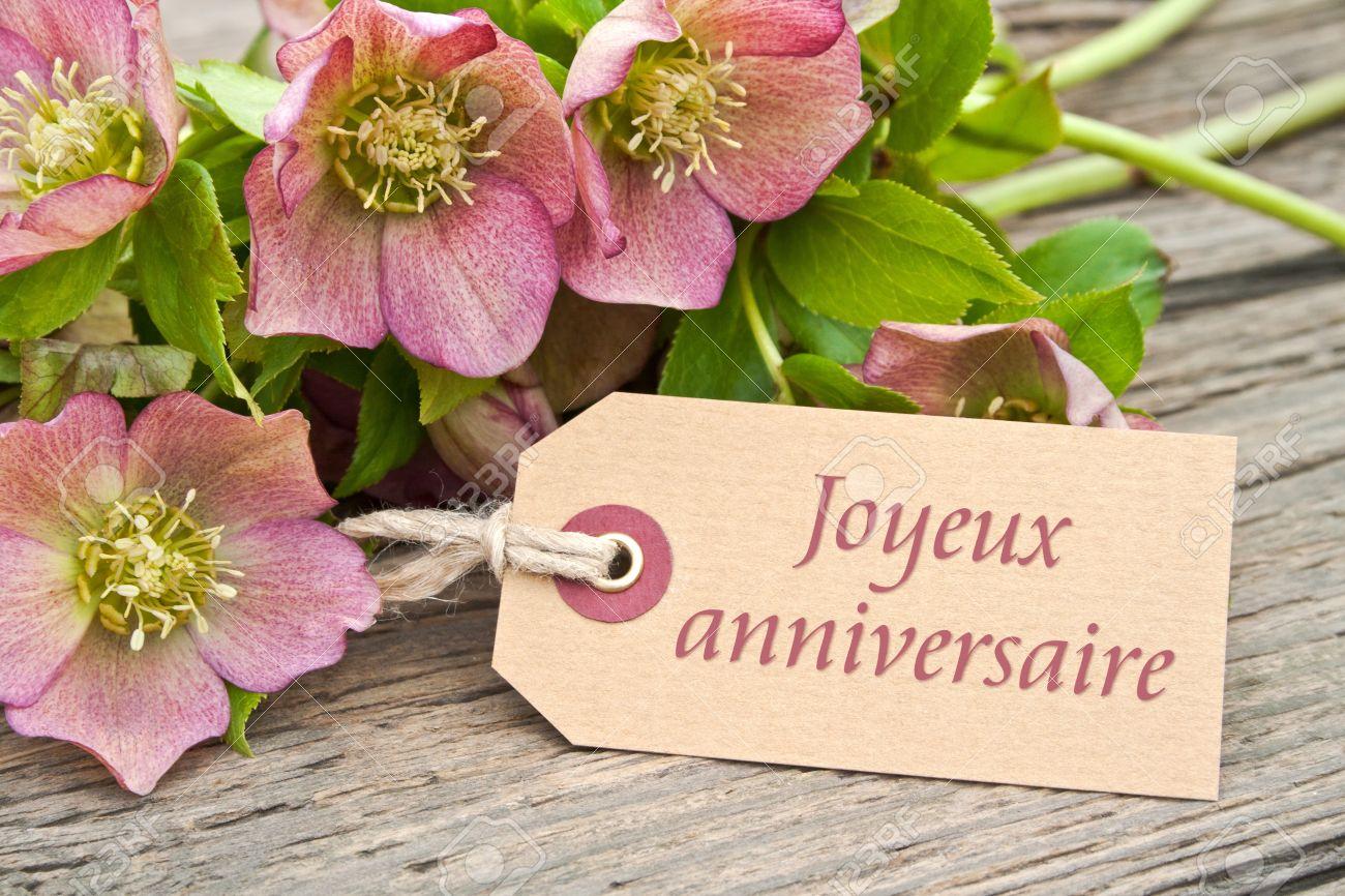 fleurs roses avec une carte d\u0027anniversaire Banque d\u0027images , 19726105