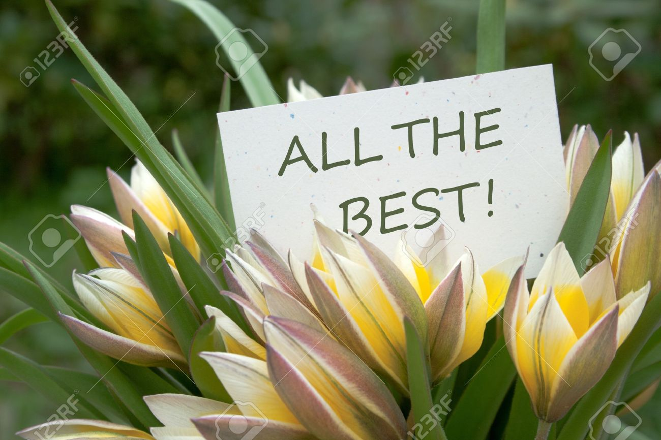 yellow tulips and card with lettering all the best Stock Photo - 19942449