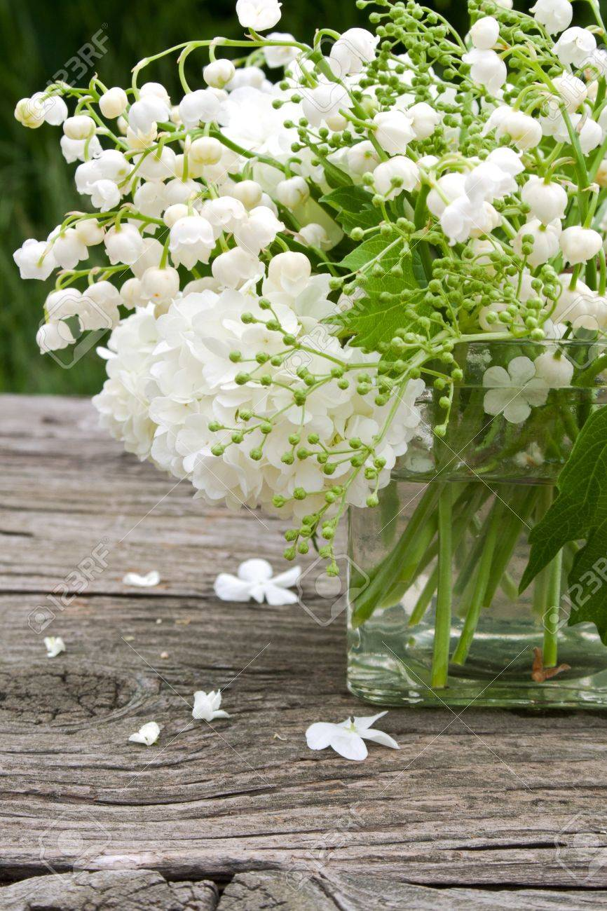 Vase With Muguet And Snowball Stock Photo Picture And Royalty Free Image Image 19942503