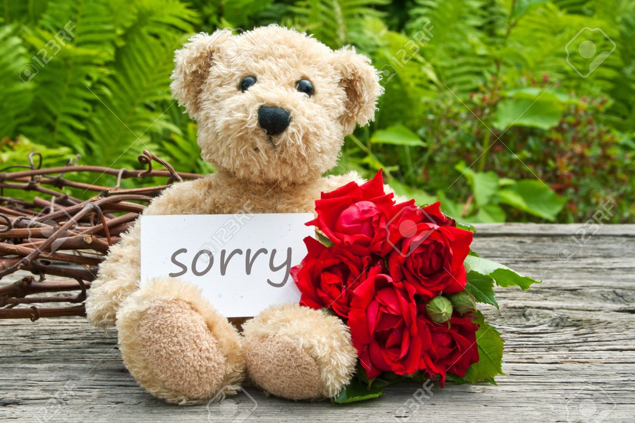 Teddy bear with red roses and card with lettering sorry stock photo stock photo teddy bear with red roses and card with lettering sorry izmirmasajfo