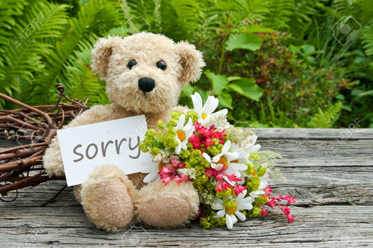 Sorry stock photos royalty free sorry images teddy bear with flowers and card with lettering sorry stock photo thecheapjerseys Image collections