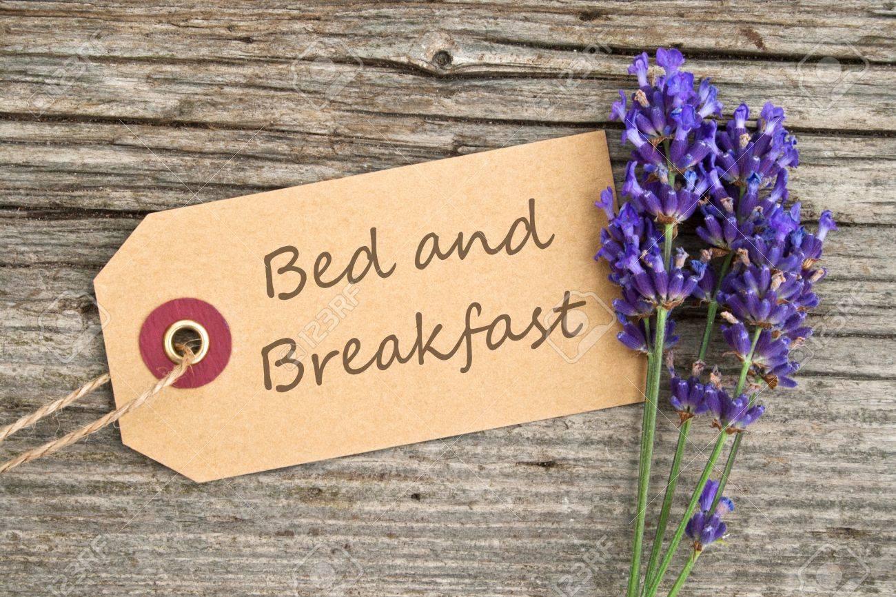 Lavendel und Etikett mit Schriftzug Bett und Frühstück Standard-Bild - 21719745