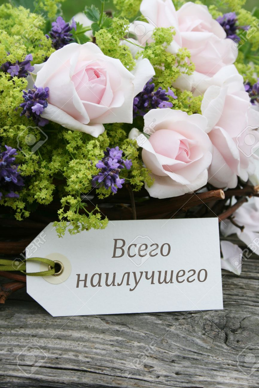 Pink Roses Lavender And Russian Birthday Card Photo – Birthday Greetings in Russian