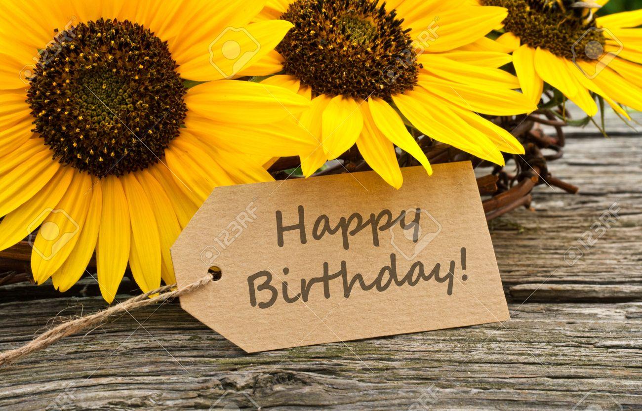 Sunflowers and birthday card Standard-Bild - 23460853