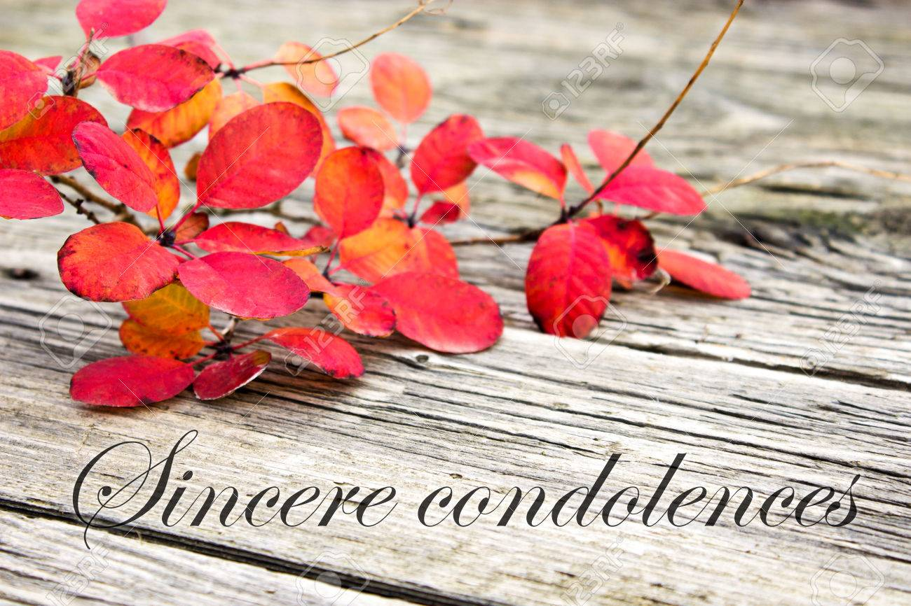 Condolence with twig with red leaves Standard-Bild - 23982117