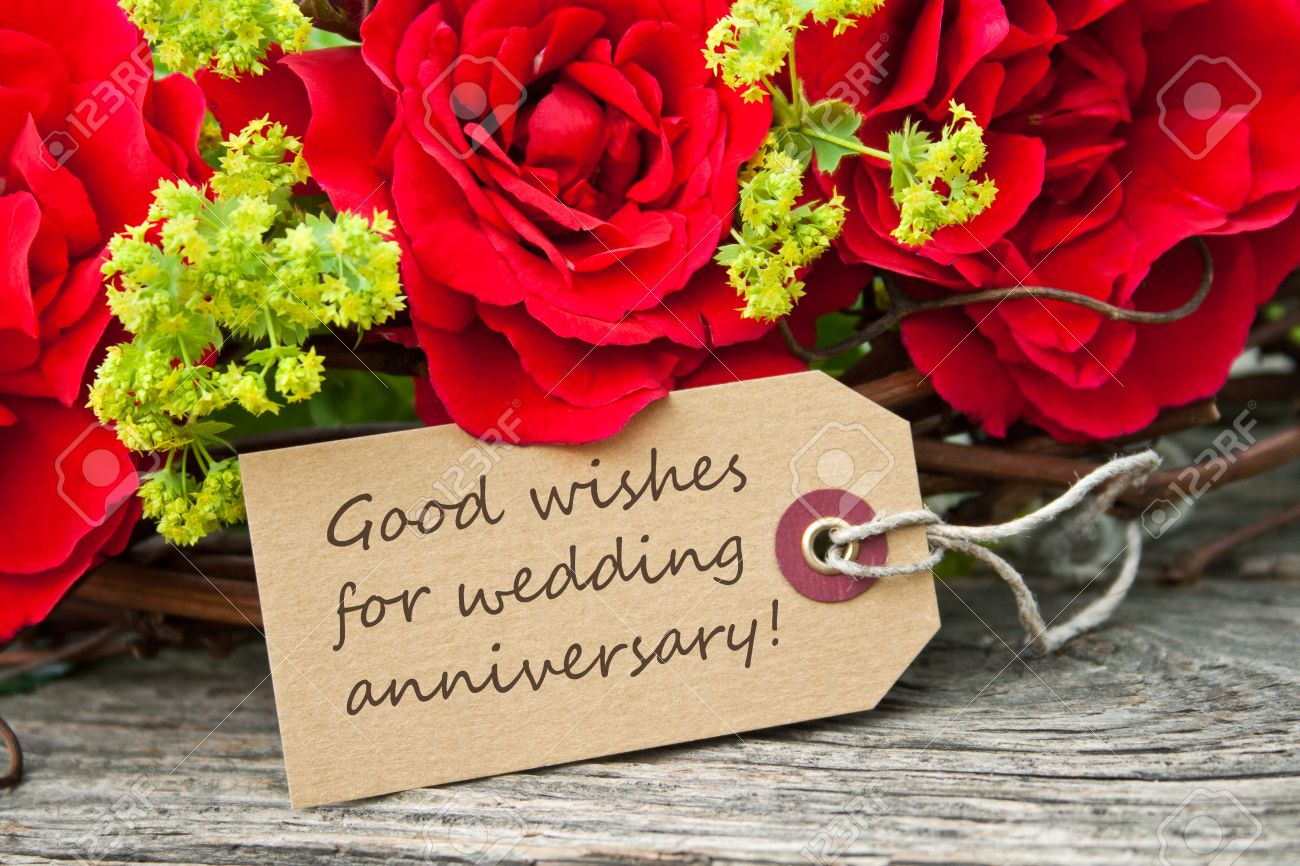 Wedding anniversary card with red roses stock photo picture and