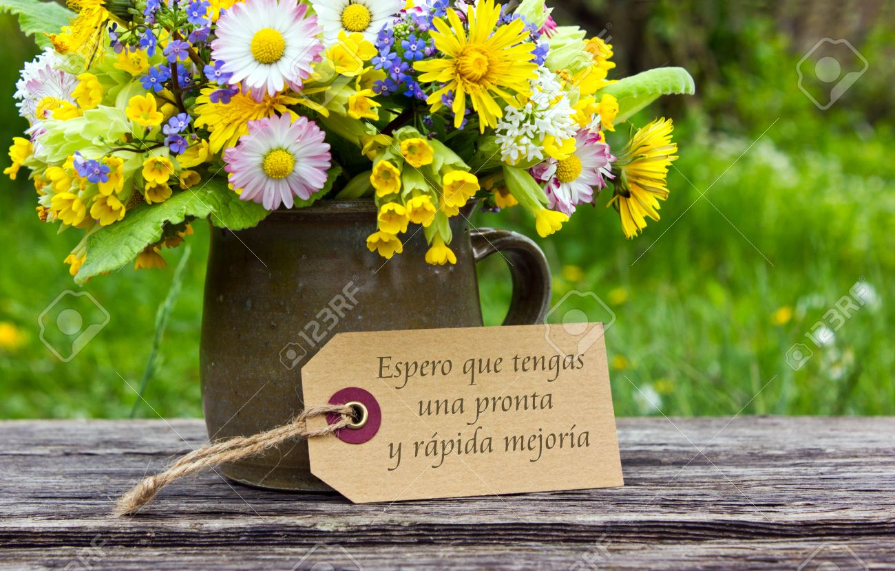 Get well soon flowers stock photos pictures royalty free get get well soon flowers spanish get well card with spring flowers dhlflorist Images