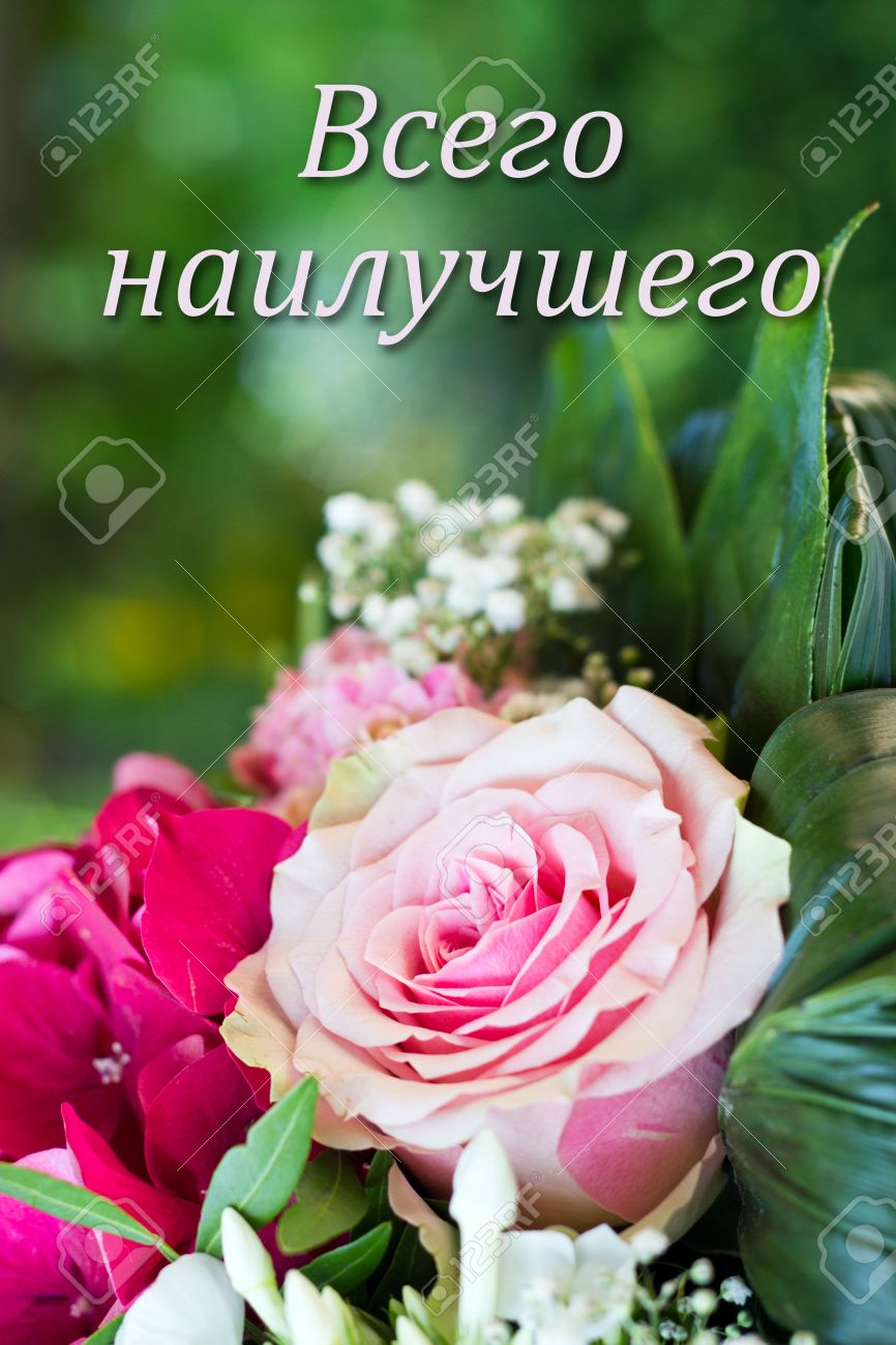 Russian Birthday Card With Pink Flowers Stock Photo