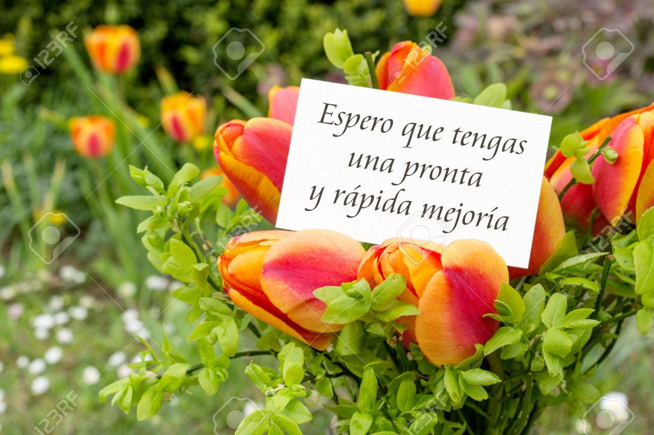 Greeting card with tulips and spanish text: I hope you make a