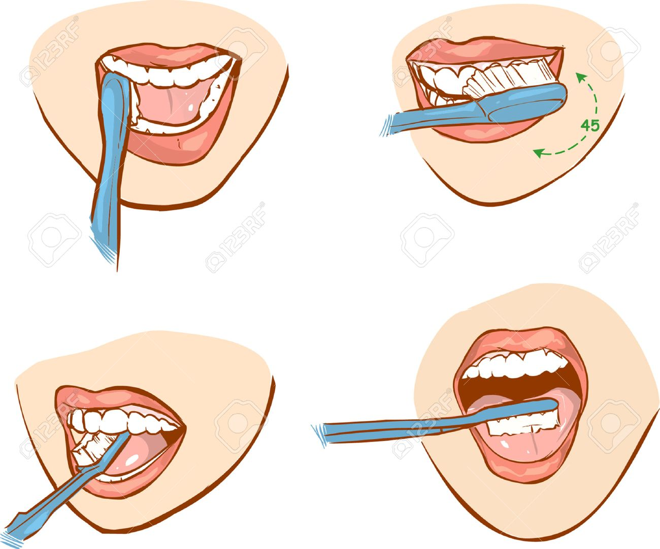 white backround vector illustration of a tooth brushing - 52746365
