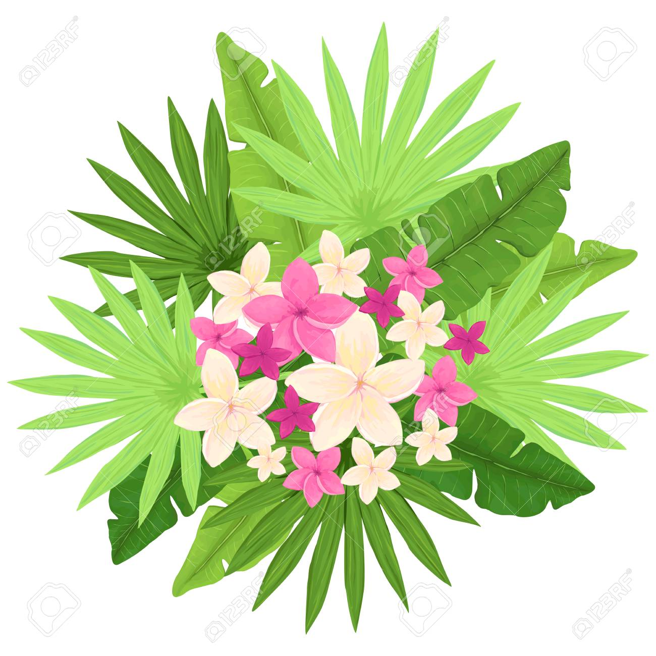 Tropical Bouquet With White And Pink Flowers And Palm Leaves Royalty Free Cliparts Vectors And Stock Illustration Image 82651036 Here's a collection of beautiful flower clipart including graphics of tropical blossoms, roses, wildflowers, lilies and many other floral images. tropical bouquet with white and pink flowers and palm leaves