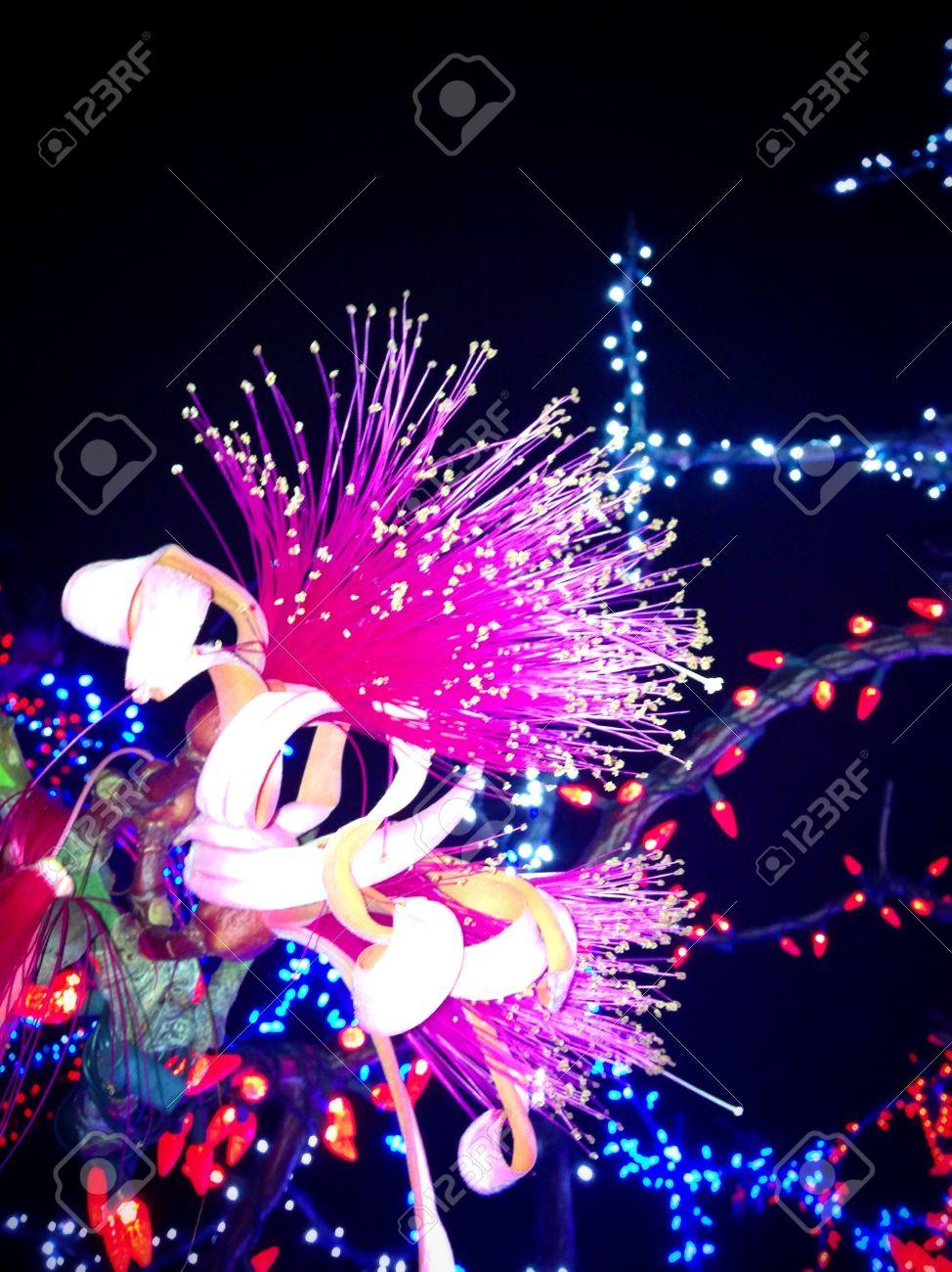 pink firework flower among christmas lights in cayman islands stock photo 21295835