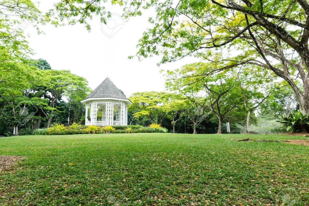 Foto De Archivo   Singapur Botánico Paisaje Jardín