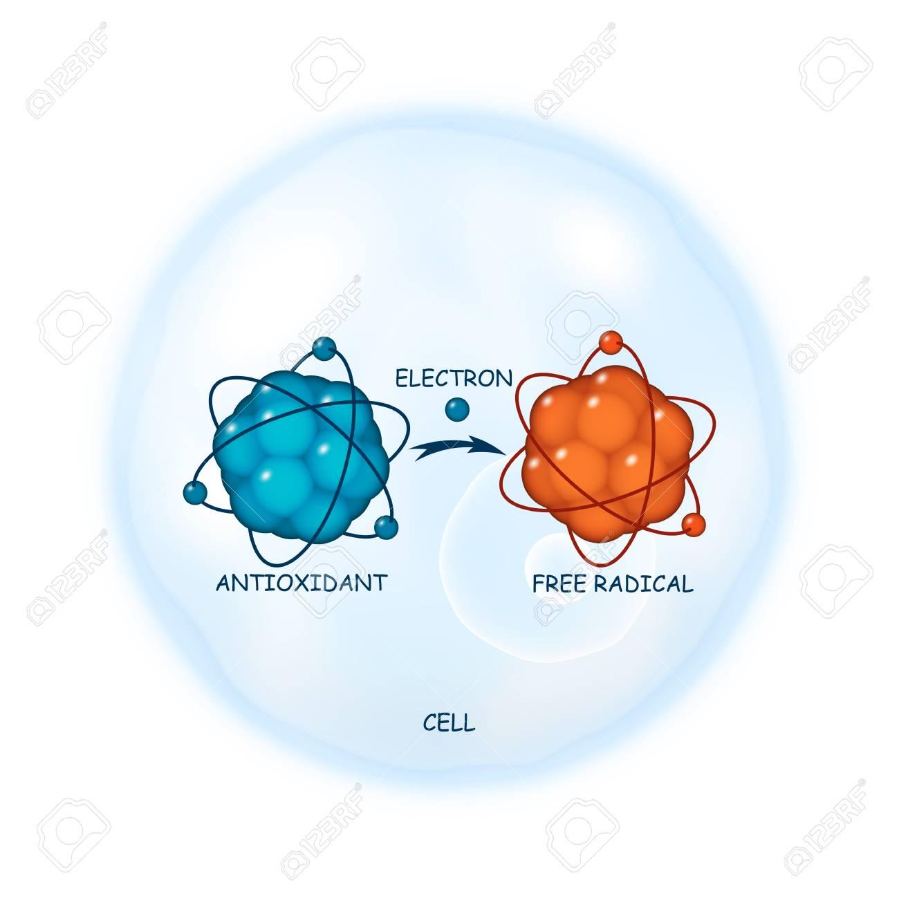 Antioxidant working principle abstract illustration - 97416334