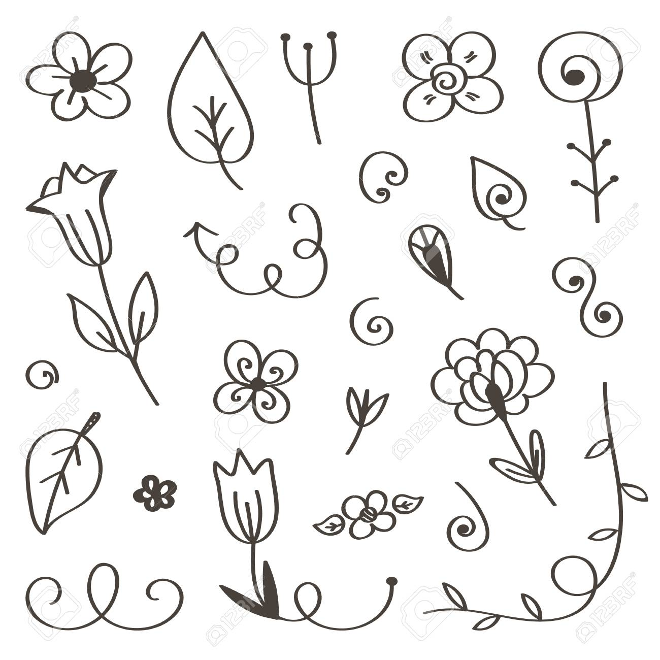 Set of hand-drawn, doodle flowers and leaves isolated on white
