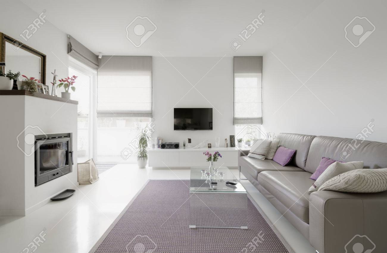 Image Of Modern Living Room With Taupe Sofa Stock Photo, Picture And ...