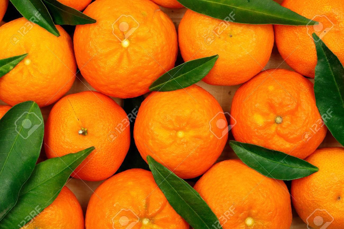fresh mandarin oranges with leaves - 33779970