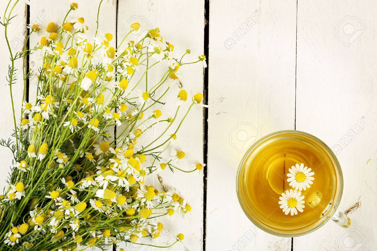 cup of chamomile tea with chamomile flowers on white wooden planks - 39909233